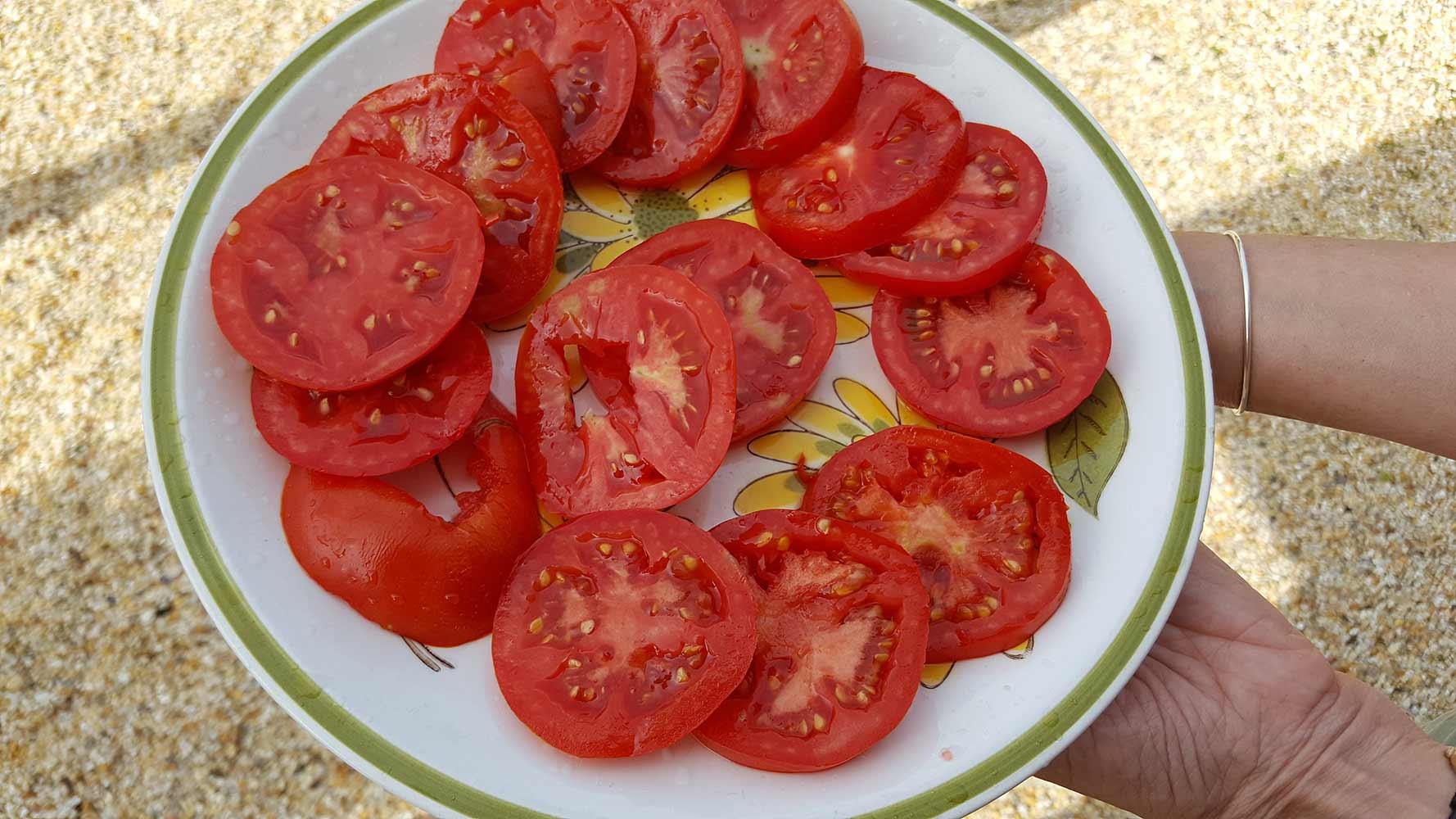 sliced-tomatoes-nj