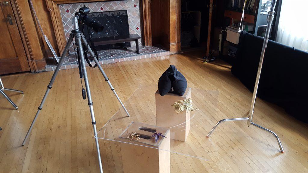 Camera Setup to shoot a leaf