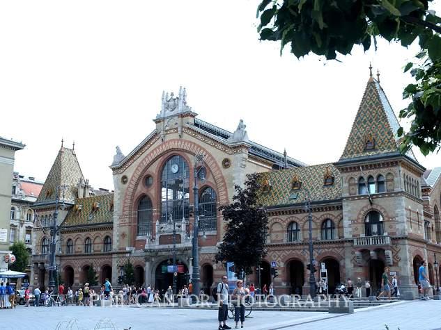 Budapest2014--239