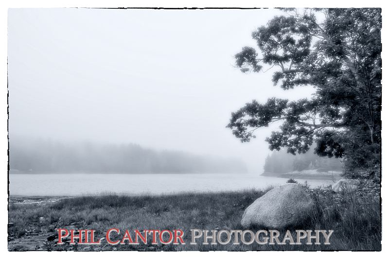 Maine Coast in fog