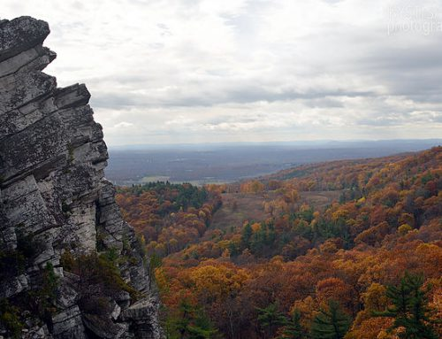 The 5 Best Places to Photograph the Fall Foliage in NJ and NY